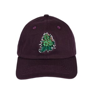 Polo Hat Wanted - Flower