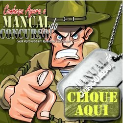 Curso Online - Manual do Concurso Público