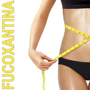 Fucoxantina (Queima Gordura) 250mg - 60Capsulas