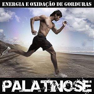 Palatinose (Fornece Energia por mais tempo) 15G - 20 Saches