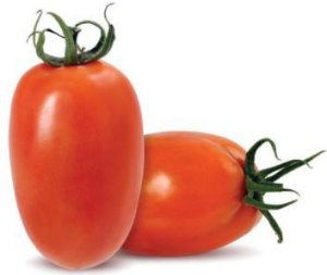 TOMATE (ANDREIA/CARMEM/DEBORA/MOLHO ITALIANO/GRAPE CEREJA)