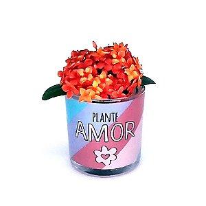 Cachepot Fofo - Plante Amor