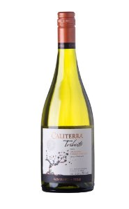 Caliterra Chardonnay Tributo Single Vineyard # Maitenal  (750ml)