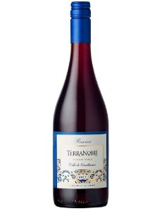 Terranoble Reserva Pinot Noir (750ml)