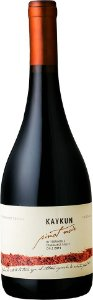 Terranoble Kaykun Pinot Noir  (750ml)