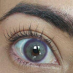 Batis Violet