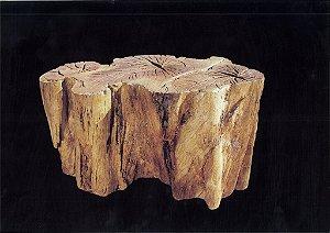 Base de mesa Orgânica II