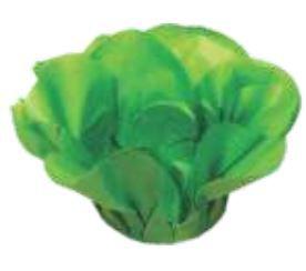 Forminha Fendi Verde Limao c/ 40 un Decora Doces