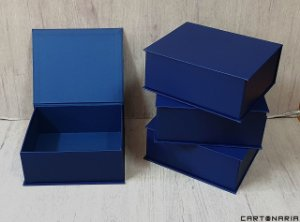 Caixa 24,5x20,5x10