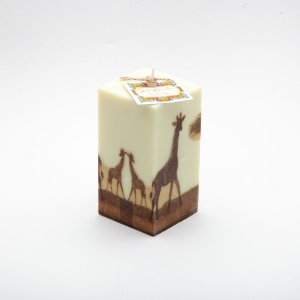 Vela Safari
