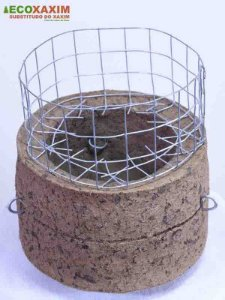 Vaso de Planta Natural Simples 13