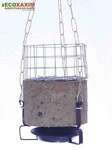 Vaso de Planta Natural Kit 13
