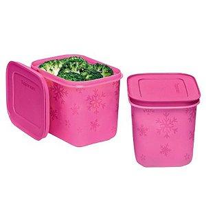 Tupperware Kit Freezer Line 2 Pecas