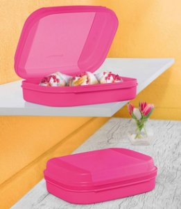 Tupperware Visual Box Mini 550ml Rosa 2 Pecas