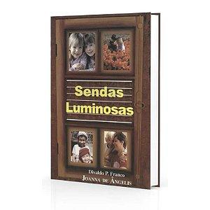 SENDAS LUMINOSAS