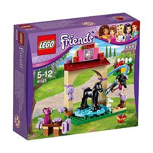 41123 LEGO FRIENDS Área de Lavagem do Potro