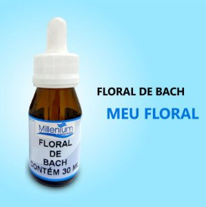 Floral de Bach Meu Floral