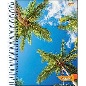 Caderno 10x1 Capa Dura 2020 Brasilidade 200 Folhas Jandaia