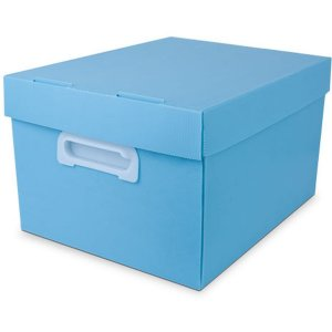 Caixa Organizadora The Best Box G 437x310x240 Azp Polibras