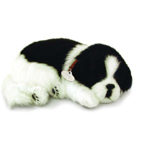 Perfect Petzzz Filhote Cachorro Border Collie Imex