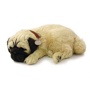 Perfect Petzzz Filhote Cachorro Pug Imex