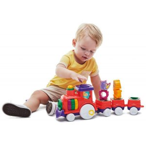 Brinquedo Educativo Zoo Trem Tateti