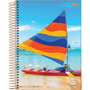 Caderno 20X1 Capa Dura 2021 Brasilidade 400 Folhas Jandaia
