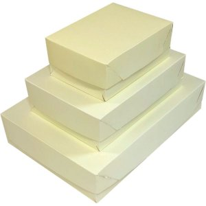 Caixa Para Presente Com Tampa Md (19X26X7,5) Tons Pastel Cristina