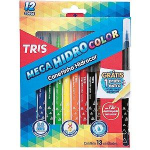Caneta Hidrografica Mega Hidro Color 12 Cores Summit