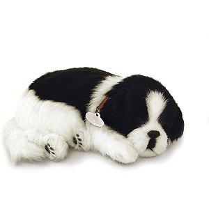 Perfect Petzzz Filhote Cachorro Border Collie Imex
