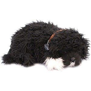 Perfect Petzzz Filhote Cachorro Cao Dagua Imex