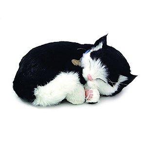 Perfect Petzzz Filhote Gato Black E White Shorthair Imex