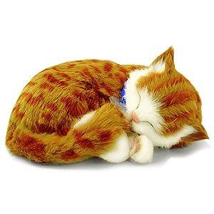 Perfect Petzzz Filhote Gato Orange Tabby Imex