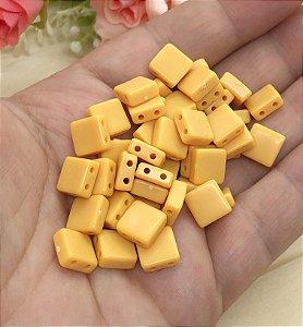 Plaquinhas Passantes - Amarela - Pacote 30 gramas