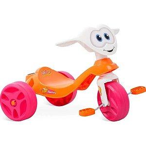 Triciclo Zootico Abelhinha