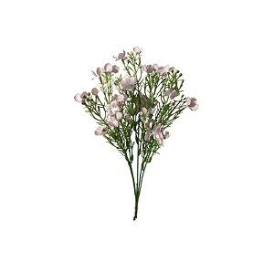 Flor de Linum EO-0041