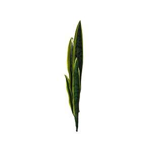 Espada de São Jorge 8014