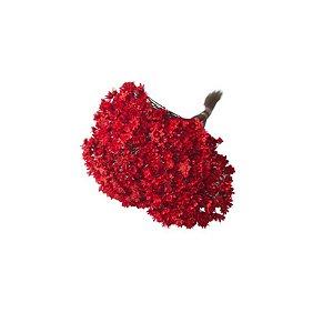 Flor Sempre Viva FLORES