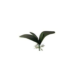 Folha de Orquidea SY01481
