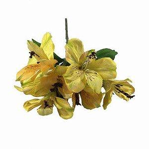 Astromelia Nara Amarelo AD0048