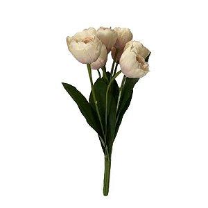 Buque de Tulipa Valentina EQ-0009