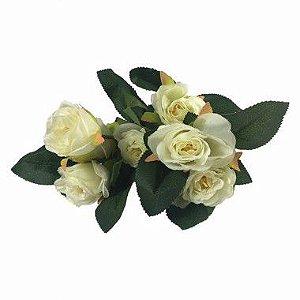 Rosa Tiffany