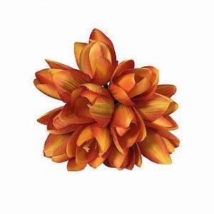 Maço de Mini Tulipa Yasmim
