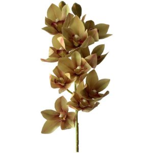 Galho de Orquídea Manu SY01492