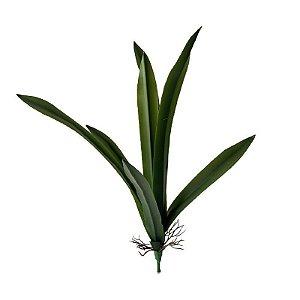 Folha de Orquídea Comprida BG-0010