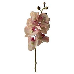 Galho de Orquídea Siliconada Fran DM-0013RS