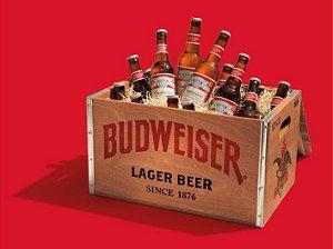 3622 Placa de Metal - Budweiser box