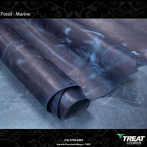 Fossil Marine