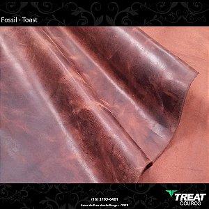 Fossil Toast