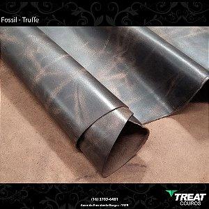 Fossil Truffe